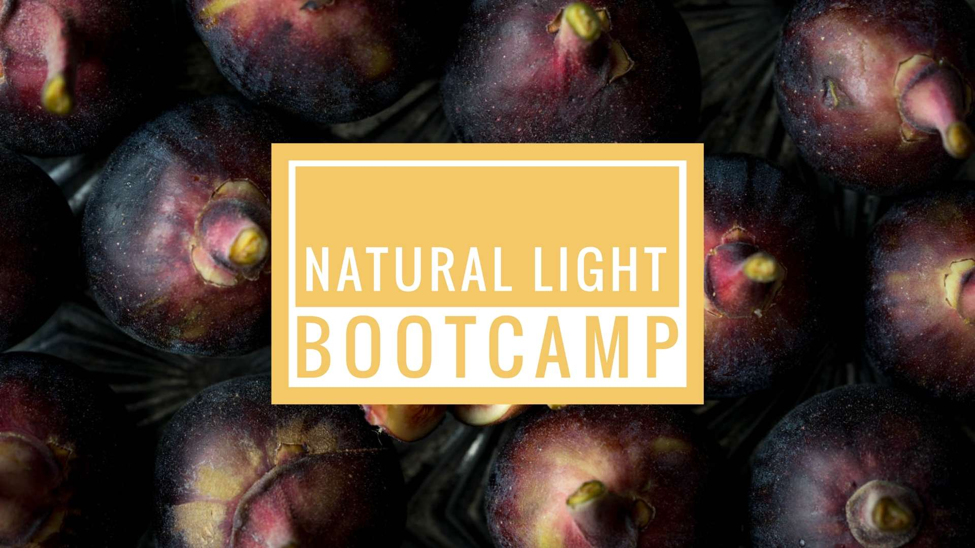 Natural Light Bootcamp Announcement
